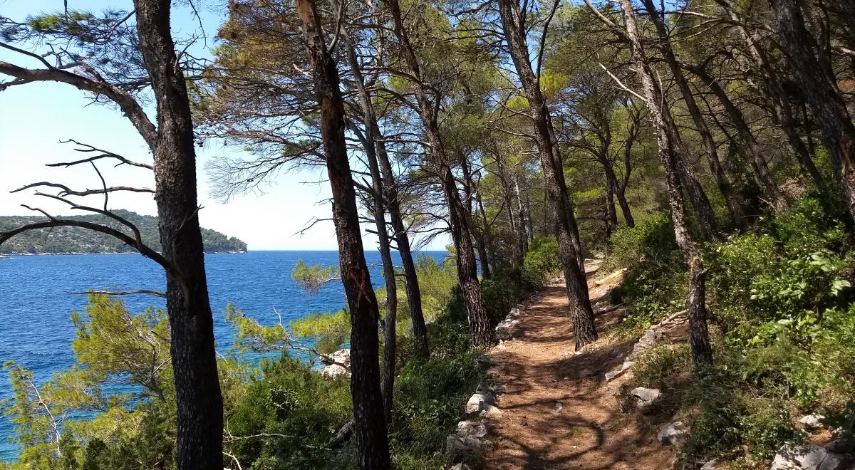 Insel Korcula Qi Gong Retreat Kroatien, juli 2020, retreat qi gong kroatien juli 2020