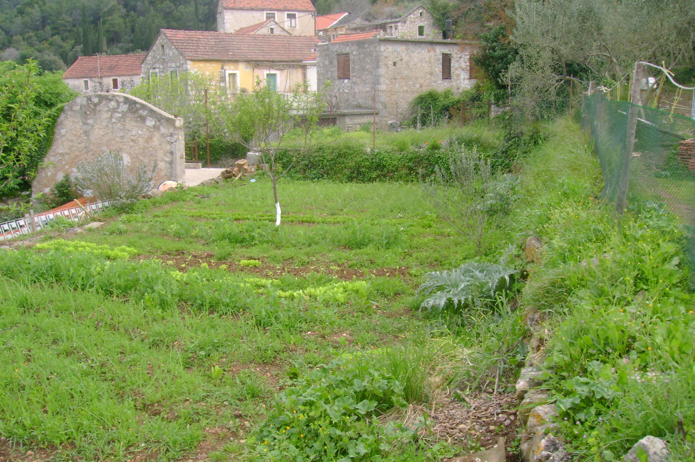 organic retreat garden hvar island croatia