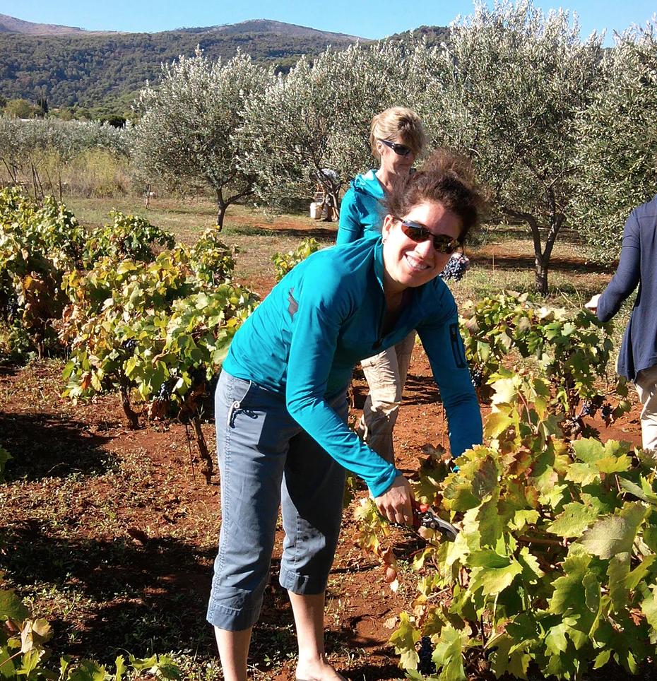 Yoga Retreat and Grape Harvest Hvar Croatia